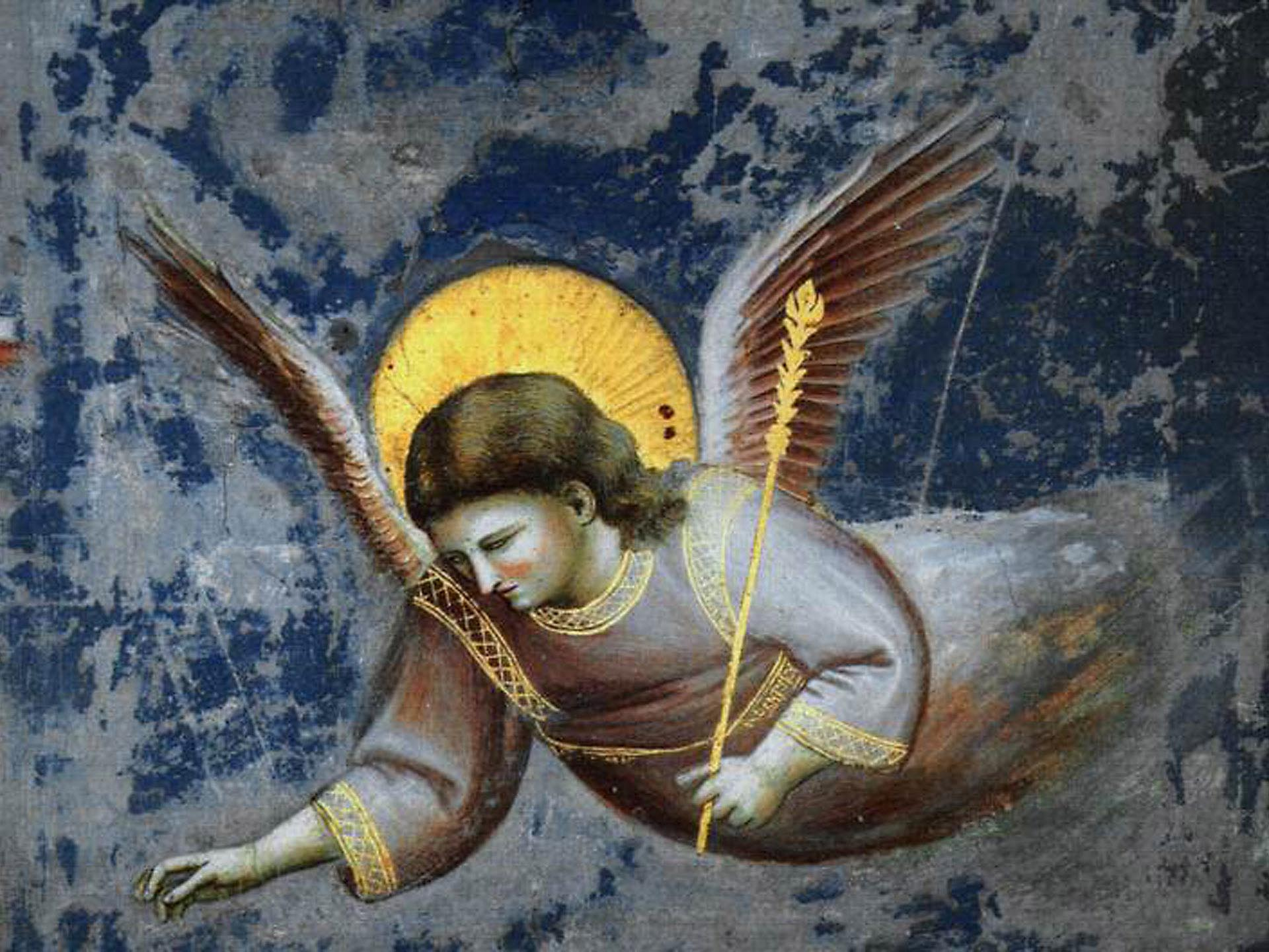 Giotto, angel (detail) from Scrovegni Arena Chapel