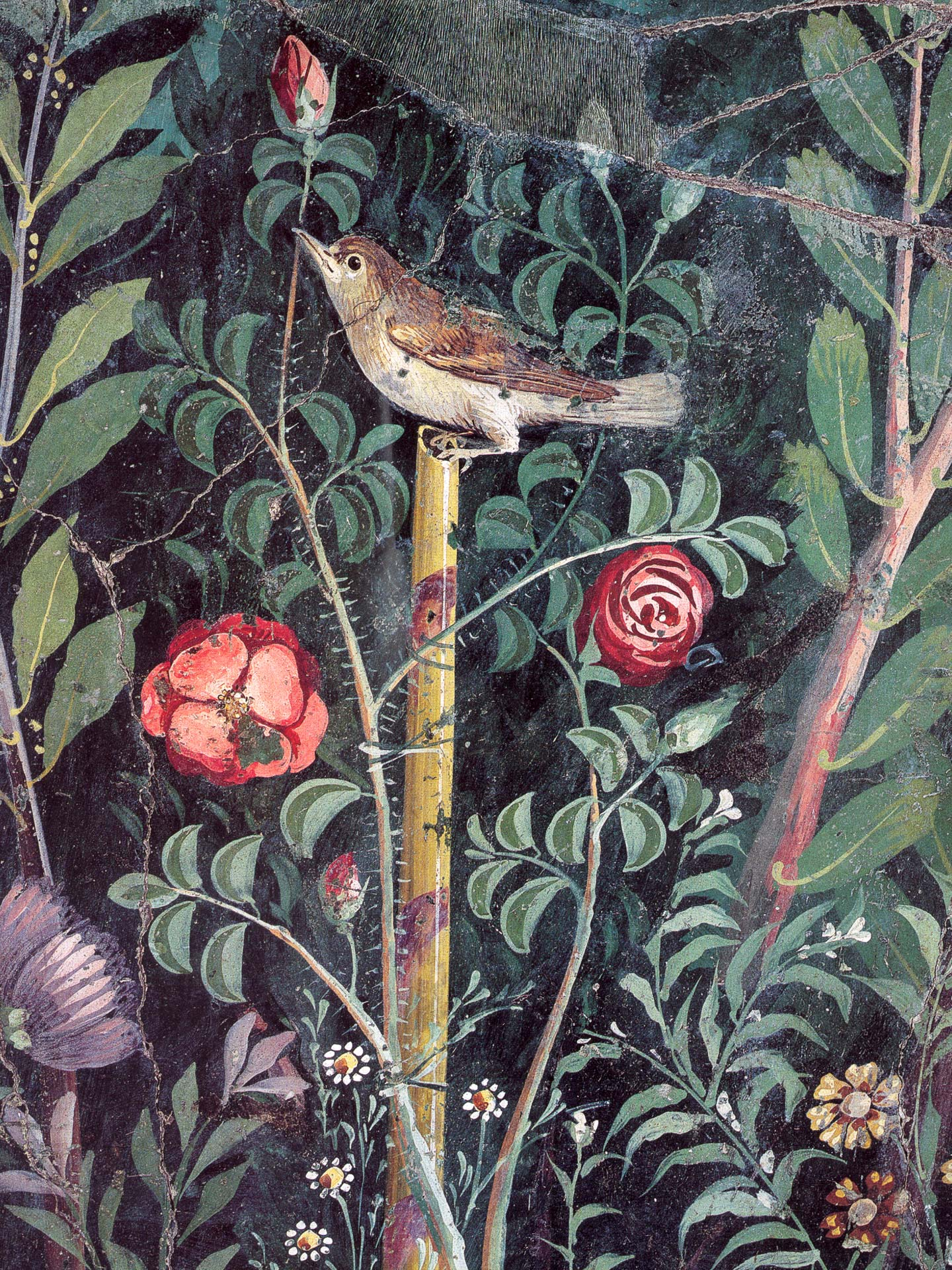 Garden from fresco of the triclinium of the House of the Golden Bracelet, Pompeii, Italy