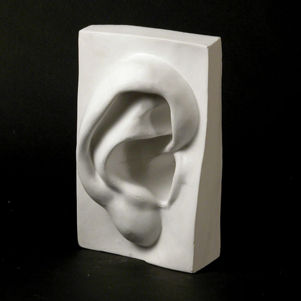 Drawing Plaster Cast: Human Ear