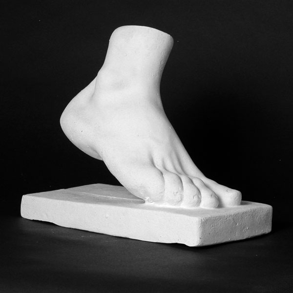 Drawing Plaster Cast: Human Foot